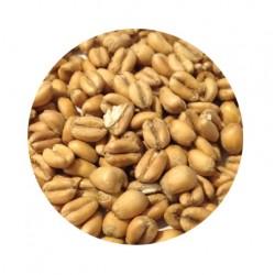Muntons Torrefied Wheat