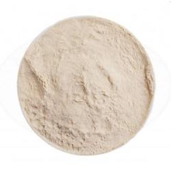 Suhi sladni ekstrakt (DME) - Pšenični