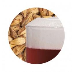 Bestmalz BEST Caramel Munich II malt