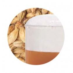 Bestmalz BEST Caramel Aromatic slad