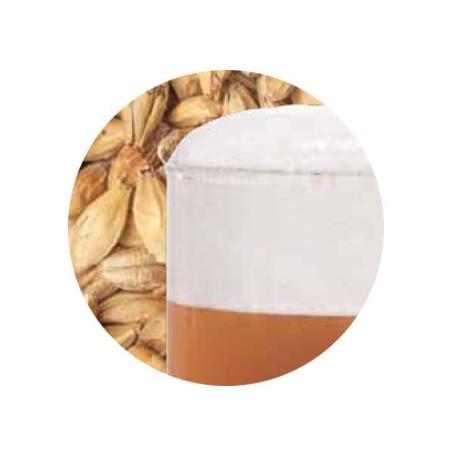 Bestmalz BEST Caramel Aromatic malt