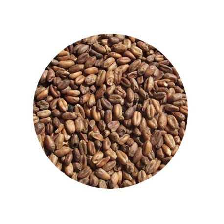 Bestmalz BEST Caramel Wheat malt